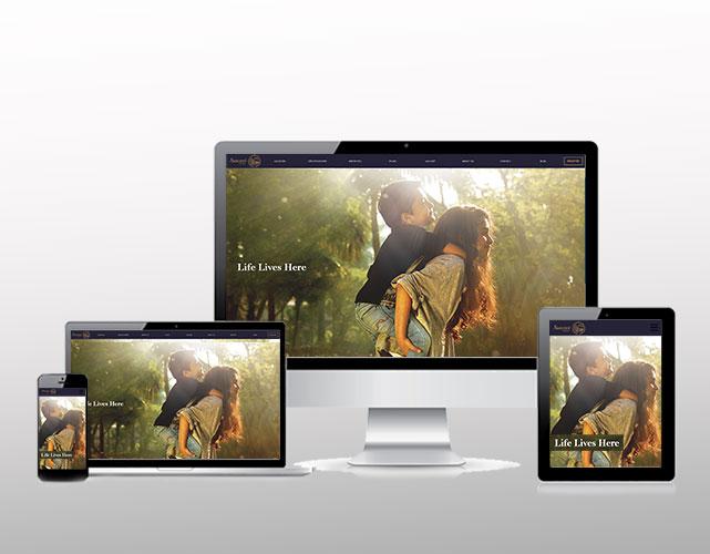 website-img